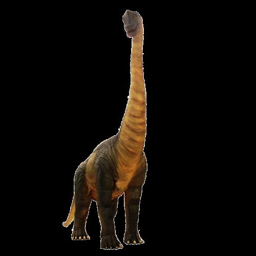 Brachiosaurus NLC DECO