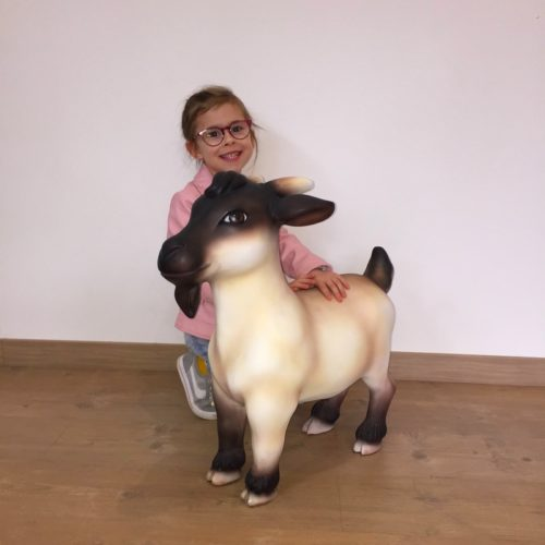 Chèvre-naine-nlcdeco.jpg