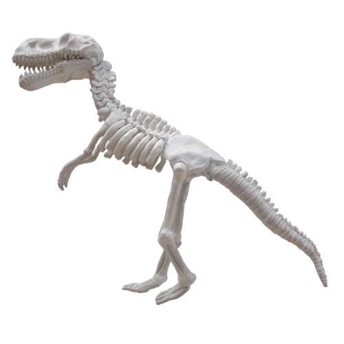 Squelette de dinosaure NLC DECO