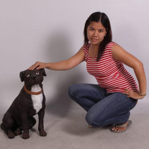 American Staffordshire Terrier NLC DECO