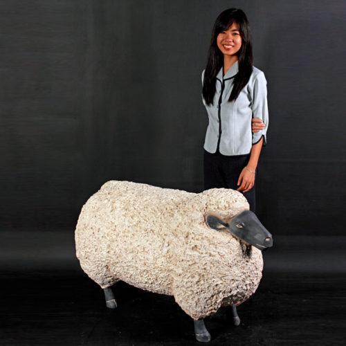 Mouton GM NLC DECO