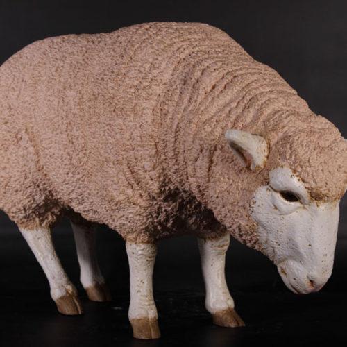 Mouton Mérinos nlc deco