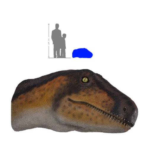 Theropod tête trophée NLC DECO