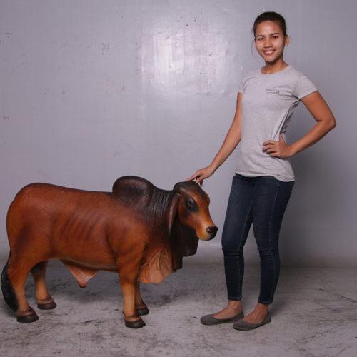 Brahmane vache marron 160001 nlcdeco nlc deco