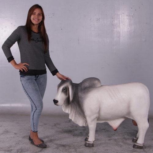 Vache Brahmane grise tête gauche 160024 nlcdeco nlc deco