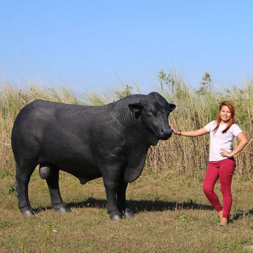 vache Angus noir black 150355 nlcdeco nlc deco