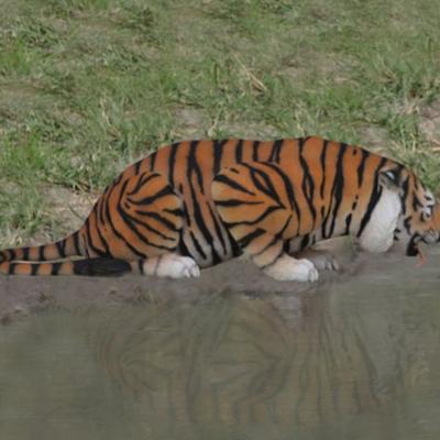 tigre qui boit animaux en resine nlcdeco déco (1)
