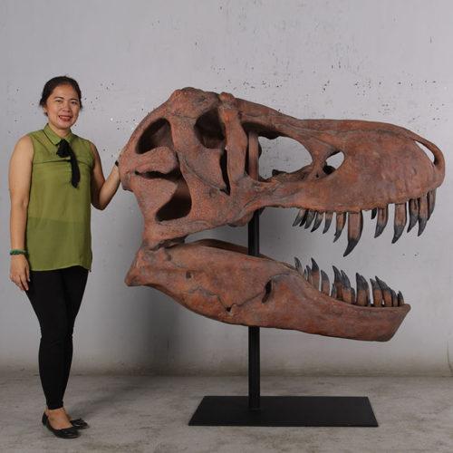 180150 Squelette tête de T-rex dinosaure nlcdeco animlaux en résine décoration