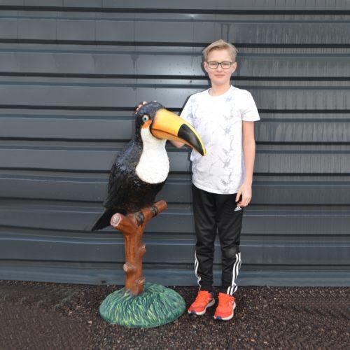 Toucan-perché-sur-son-tronc-nlcdeco-.jpg