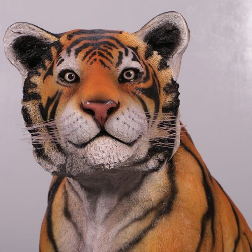 Tête-de-tigre-nlcdeco.jpg