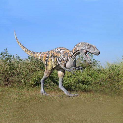 Dinosaure carnivore nlcdeco