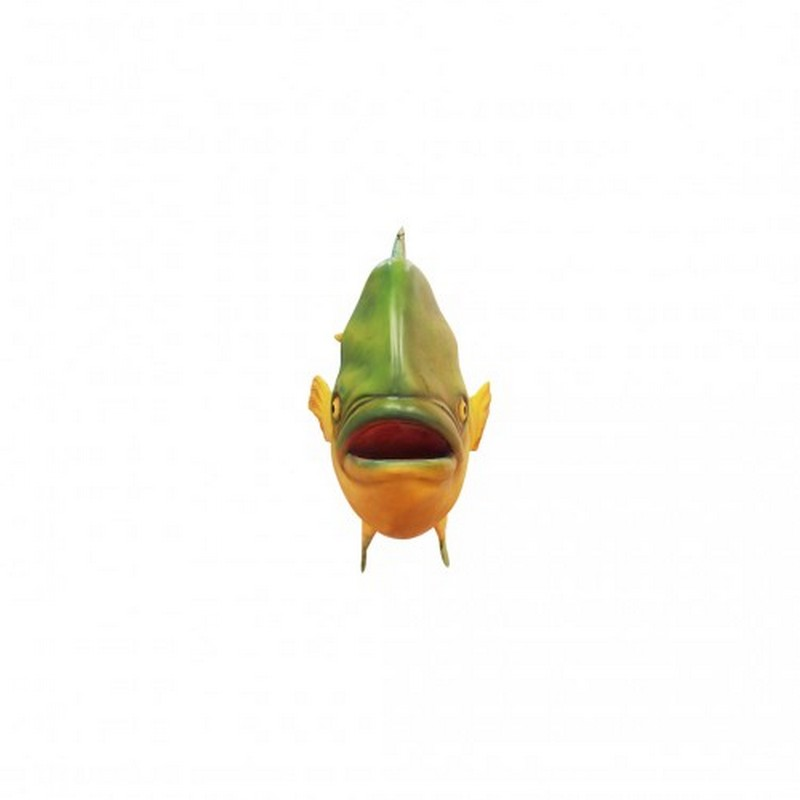 Le coryphène nlcdeco
