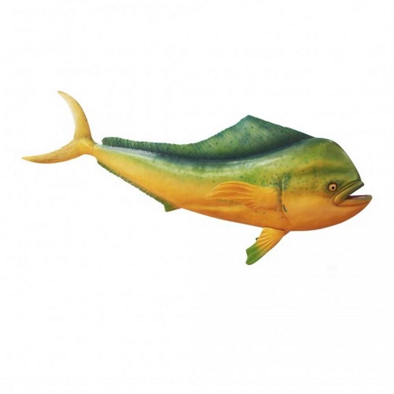 dolphinfish Mahi Mahi nlcdeco