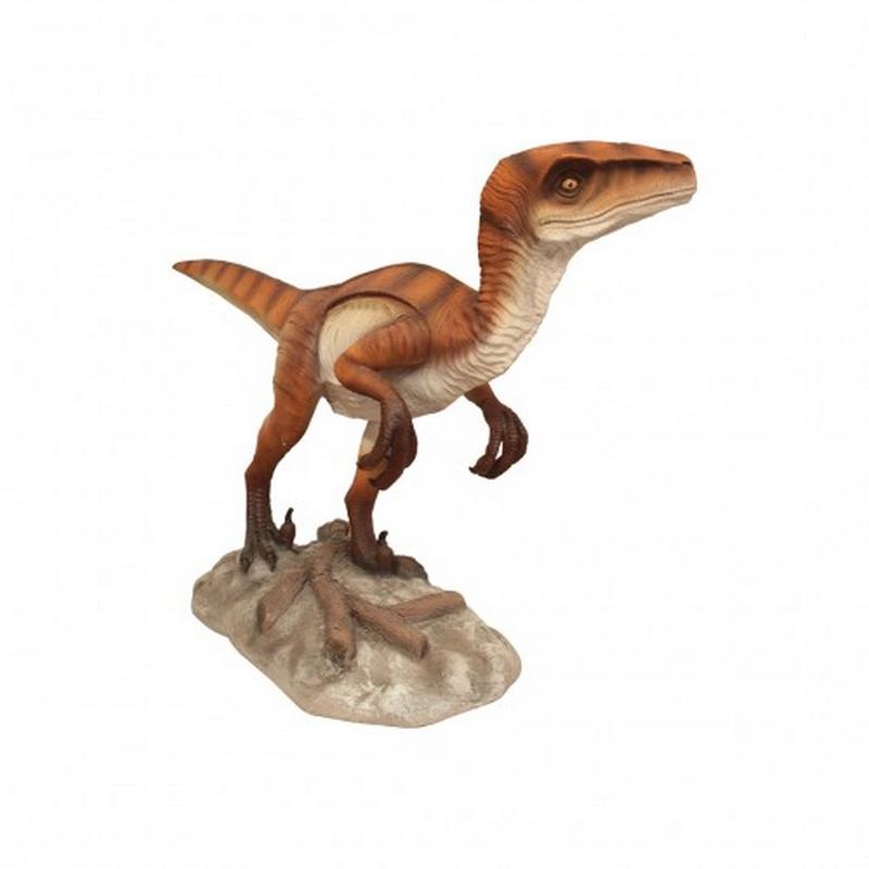 vélociraptor nlcdeco