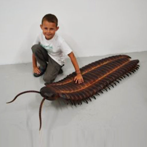 Anthropleura dinosaure resine nlc deco déco animaux