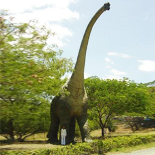 Brachiosaure-adulte dinosaure resine jurasik park nlc déco deco