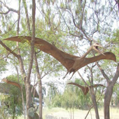 Ptérosaurus nlc deco nlc déco