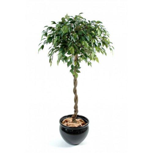 Ficus boule artificiel jardinerie nlcdeco