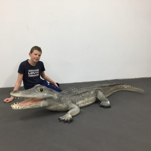 Alligator-nlcdeco.jpg