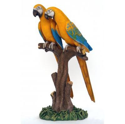 Couple de perroquets