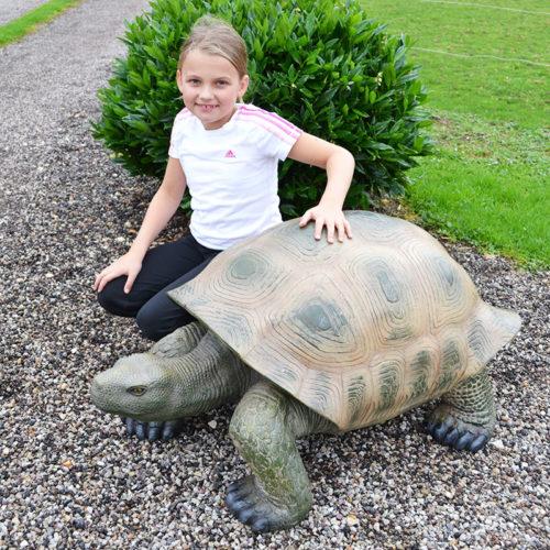 tortue geante nlcdeco