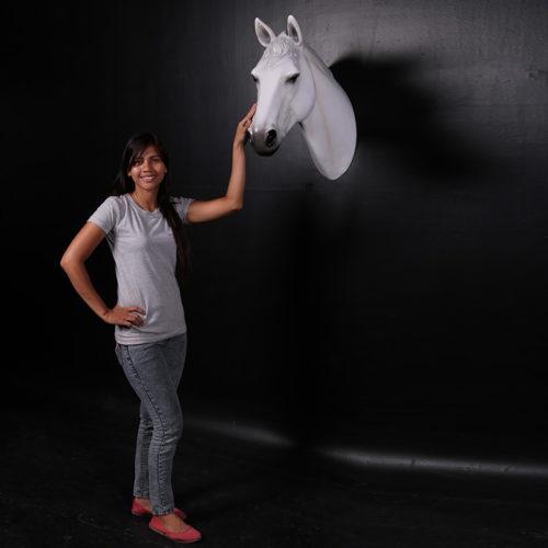Trophée Cheval blanc 150090 nlcdeco nlc deco