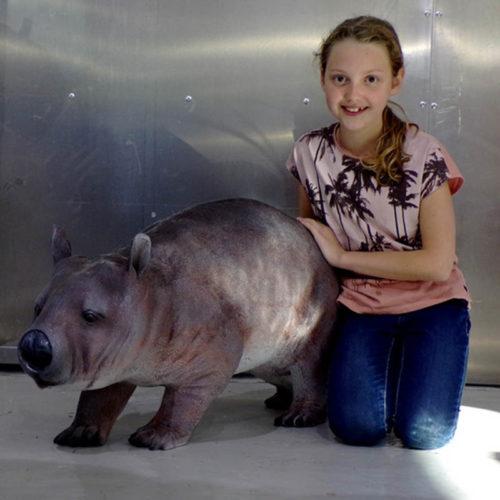 Wombat 100118 nlc deco