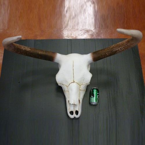 crane de taureau en resine Trophée-Crâne-de-Taureau nlc déco NLCDECO