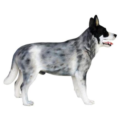 Berger-Australien nlc déco chien resine