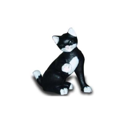 Chat qui lève sa patte