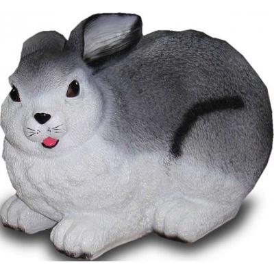 Lapin domestique gris