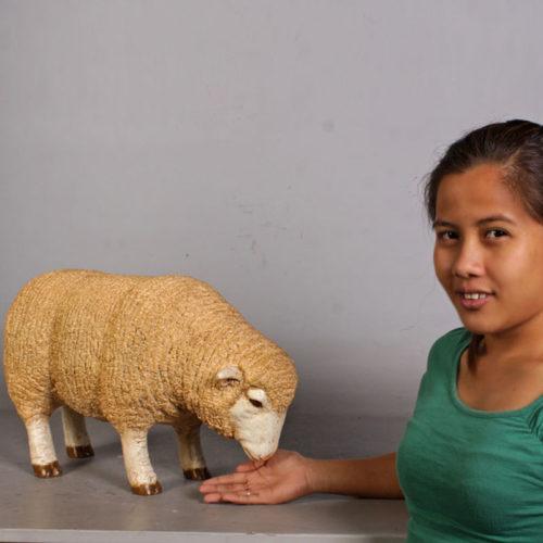 Mouton broute 110125 nlcdeco nlc deco