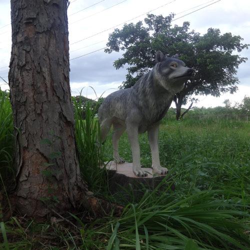 Loup sur un tronc NLC DECO