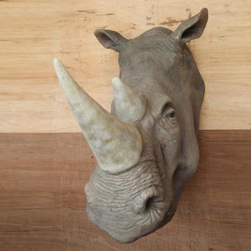 Trophée Rhinocéros nlc deco