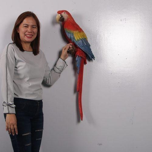 Perroquet-ARAS-Rouge-nlcdeco-animaux-en-résine-tropicaux-taille-réelle.jpg