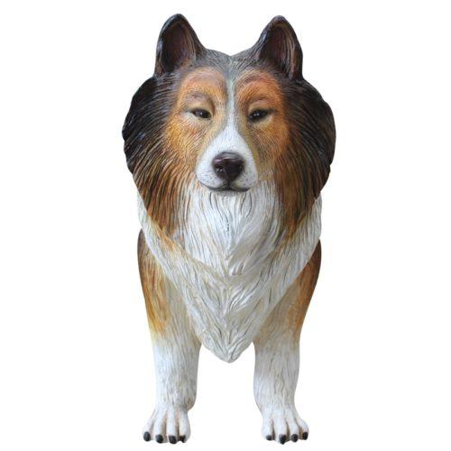 Colley chien de berger nlcdeco