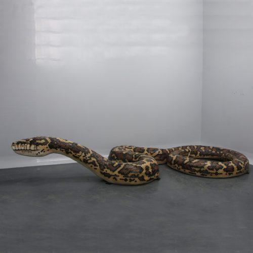 Anaconda 5 mètres nlcdeco