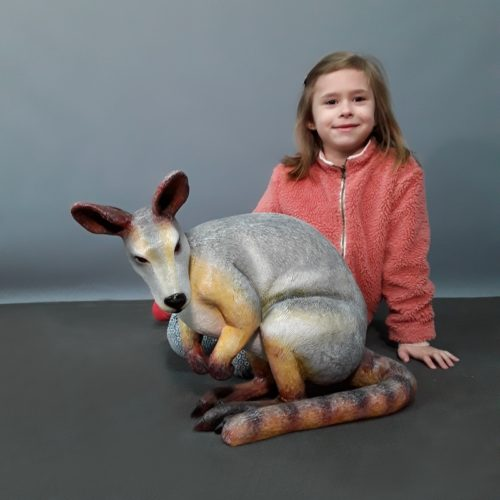Petit wallaby nlcdeco