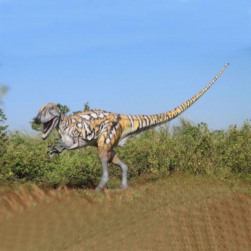 Dinosaure nlcdeco